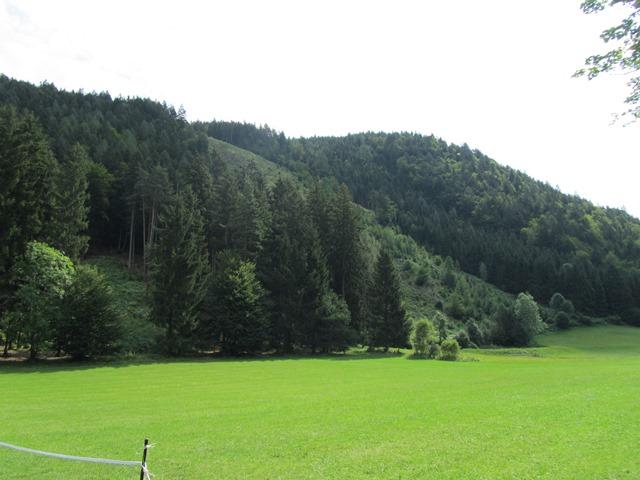 camp_2012_24